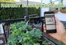 FARMBOT ระบบปลูกพืชอัตโนมัติ
